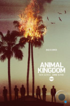 По волчьим законам / Animal Kingdom (2016-2017)