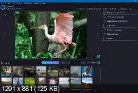 Ashampoo Photo Optimizer 8.2.3 (D.C. 08.03.2021)