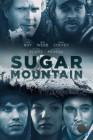 Сахарная гора / Sugar Mountain (2016) L2