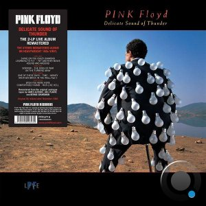 Pink Floyd - Delicate Sound Of Thunder (2020) FLAC
